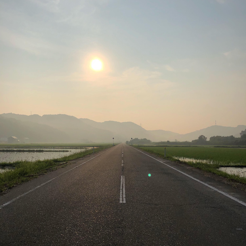 朝日,渋滞,クルマ