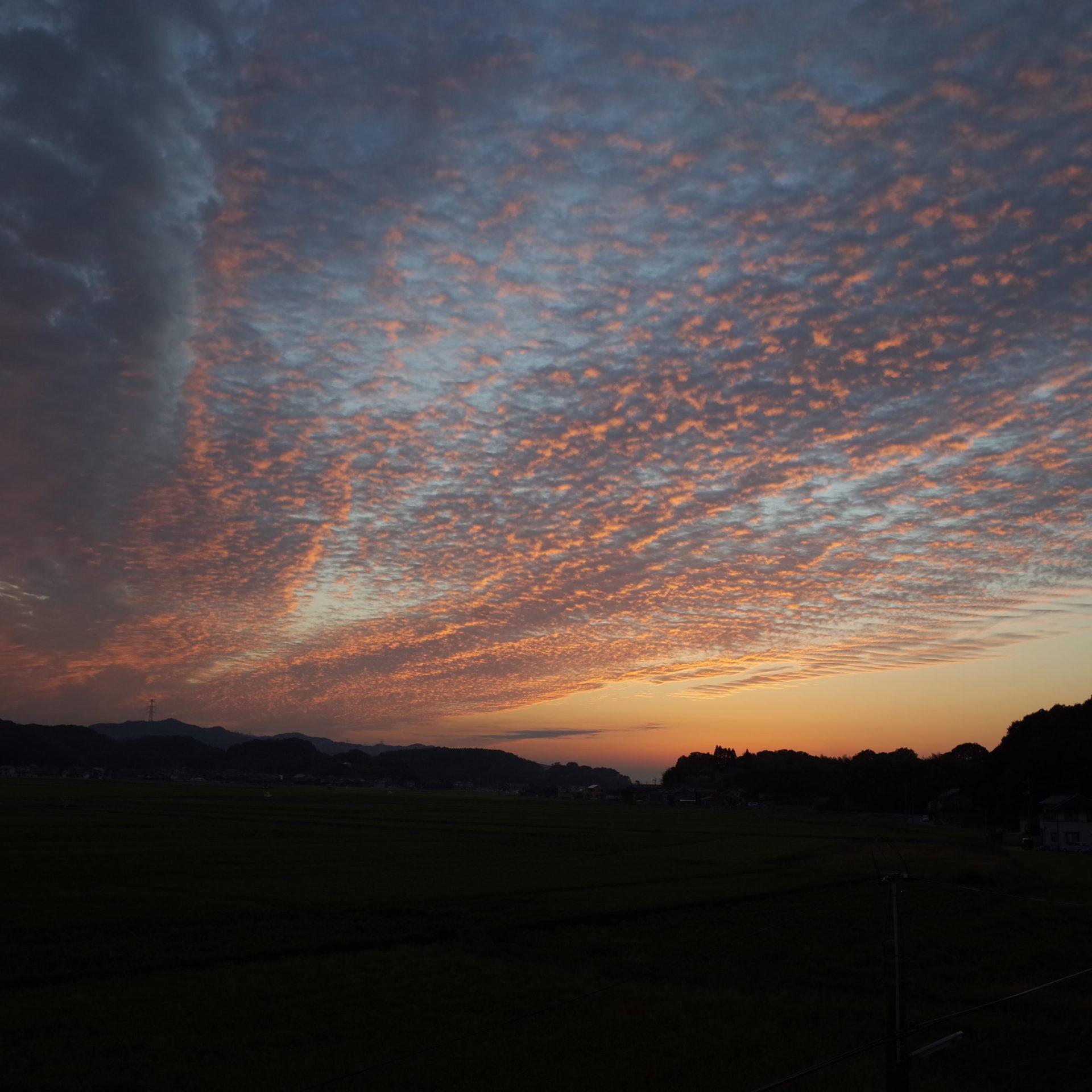 秋、秋の空、鱗雲、うろこ雲、夕日、夕陽、日の入り